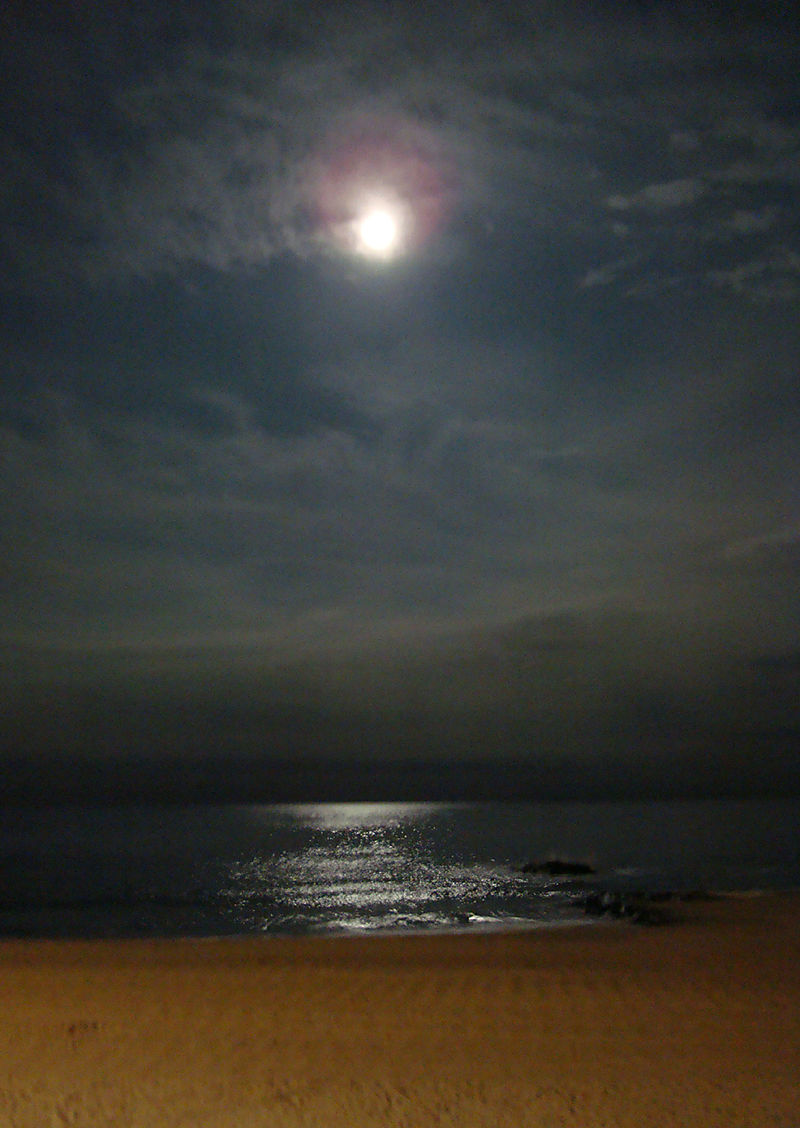 NJ-Moonrise at Long Branch
