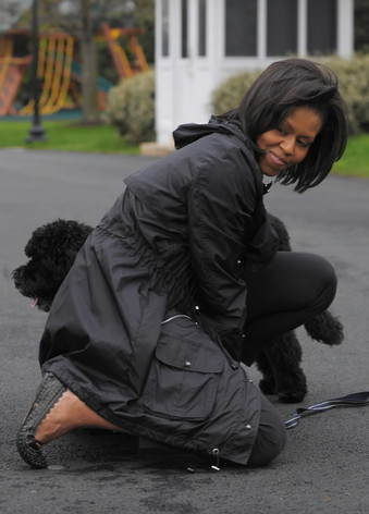 Michelle Obama and Bo-thumb-340x472