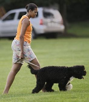 Michelle Boom Boom Obama