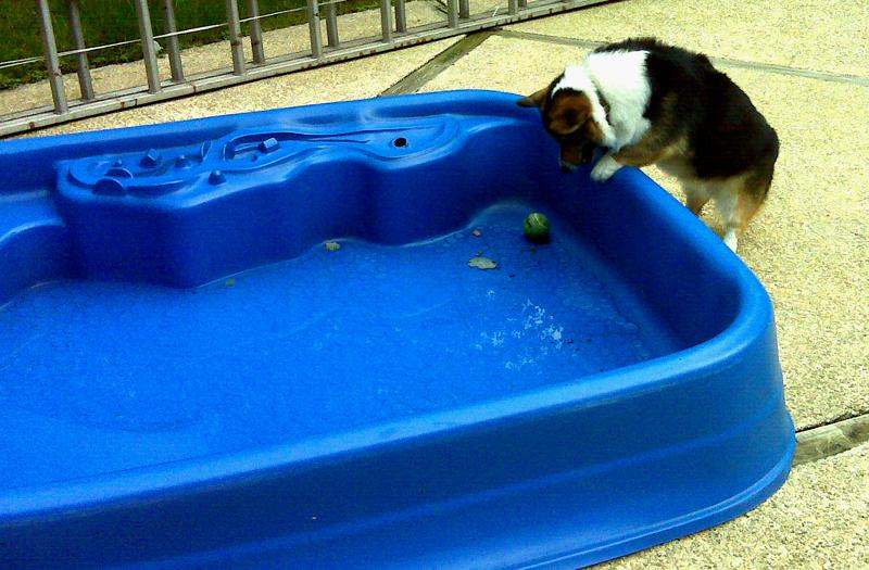 Poolball2