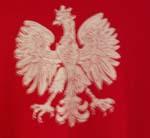 Polish_falcon