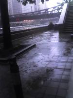 Rain_copy